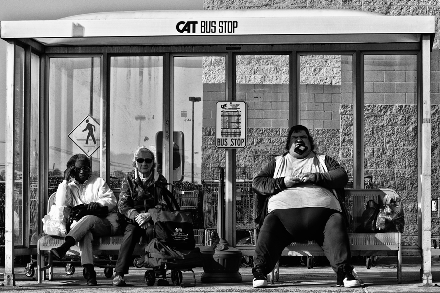 CAT bus stop